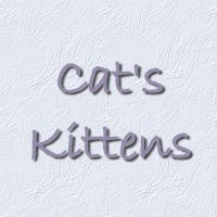 Cat's Kittens - see all the photos of us!